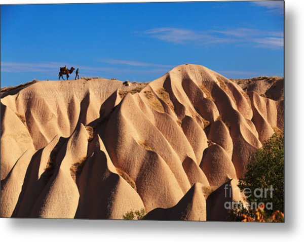 Camel And The Cameleer On The Rock And Metal Print by Yavuz Sariyildiz
