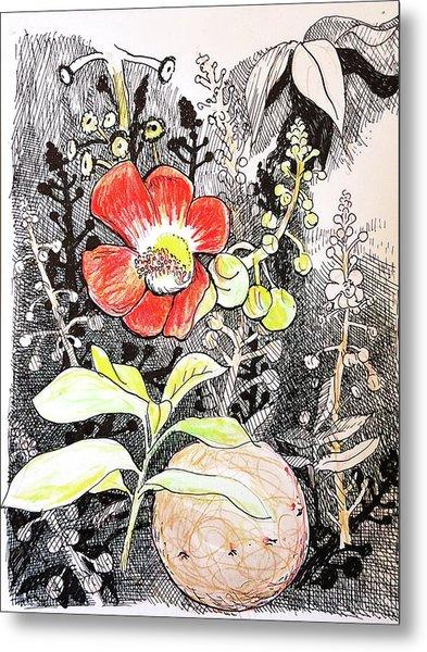 Cannonball Flower Botanical Metal Print