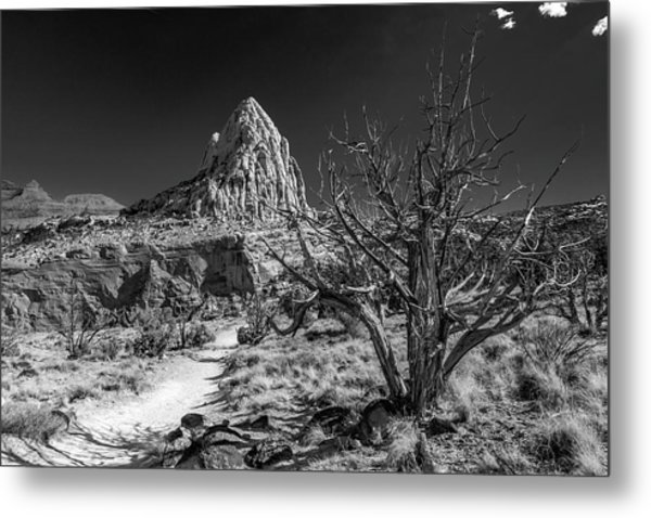 Capitol Reef Np - But, It's A Dry Heat... Metal Print