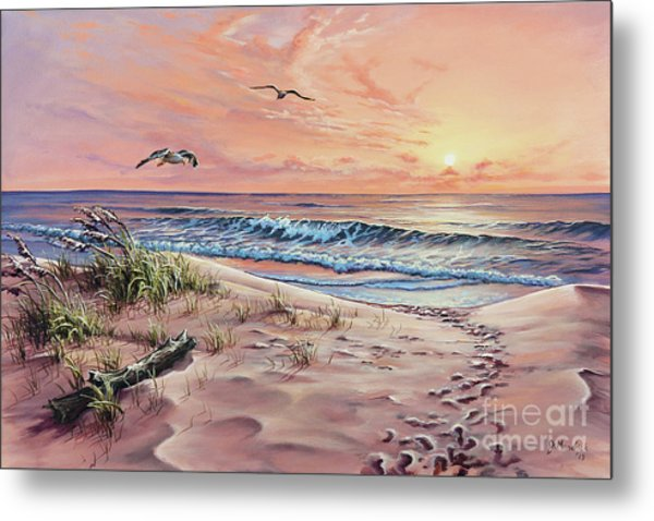 Captured In The Morning Light Metal Print