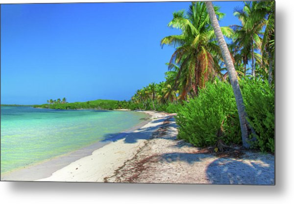 Caribbean Palm Beach Metal Print