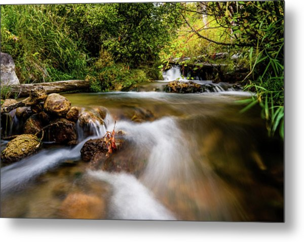 Metal Print featuring the photograph Cascades On The Provo Deer Creek by TL Mair