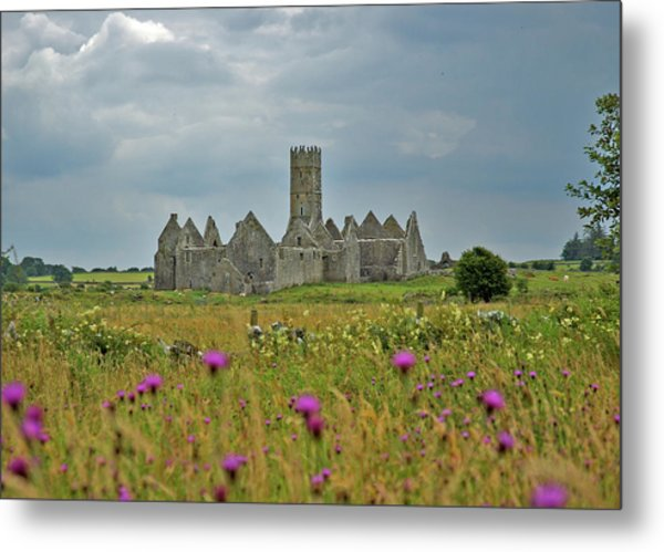 Metal Print featuring the photograph Castle In The Wildflowers by Mark Duehmig