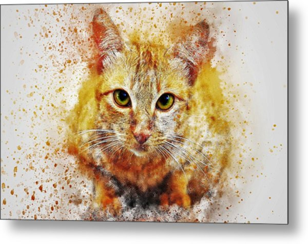 Cat's Eye Metal Print