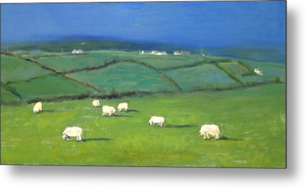 Celtic Sheep Metal Print