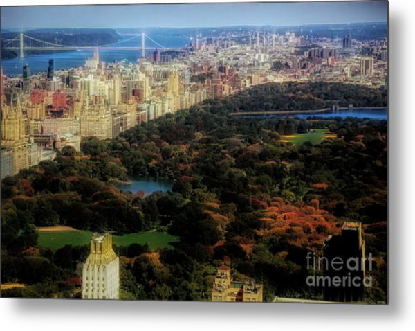 Central Park Flare Nyc  Metal Print
