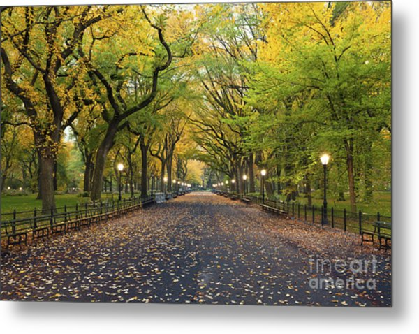 Central Park. Image Of  The Mall Area Metal Print