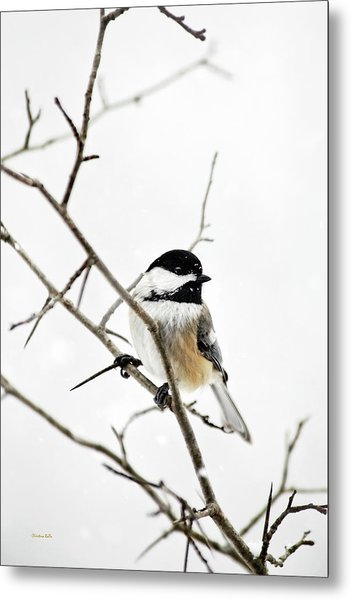 Charming Winter Chickadee Metal Print