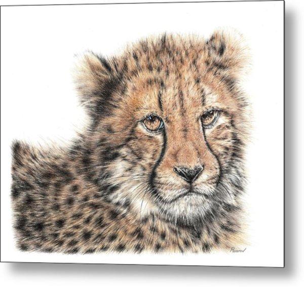 Cheetah Cub Metal Print