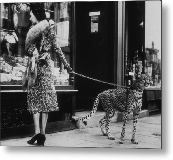 Cheetah Who Shops Metal Print by B. C. Parade