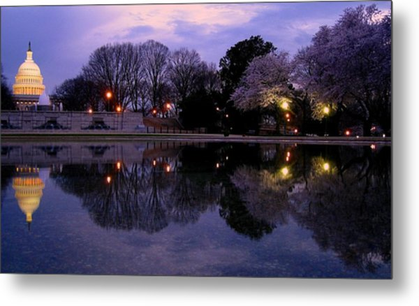 Cherry Blossom At Capitol Hill Metal Print by Patrick Yuen