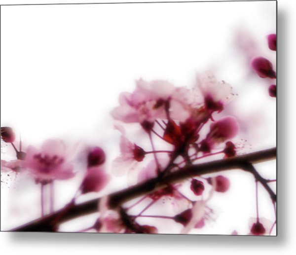 Cherry Triptych Left Panel Metal Print