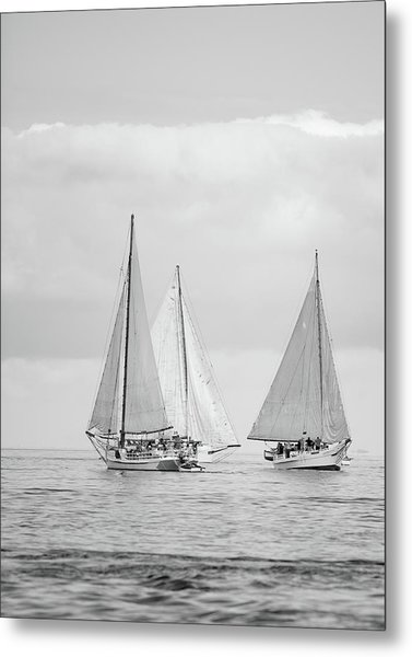 Metal Print featuring the photograph Chesapeake Bay Skipjacks by Mark Duehmig