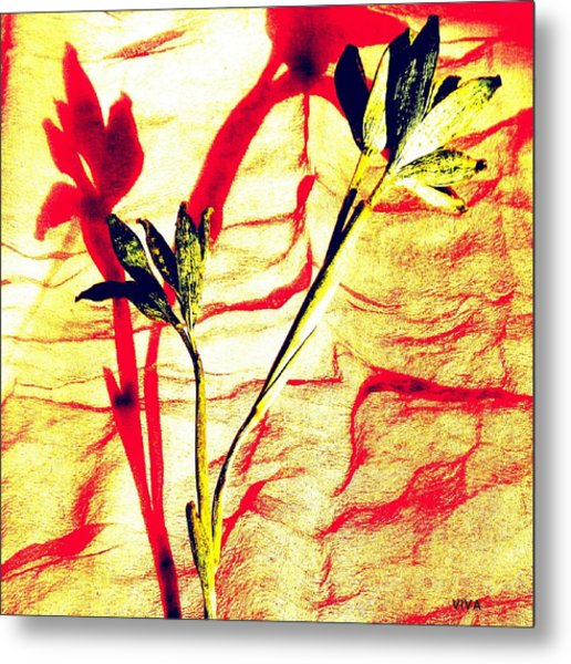 Clementine Sprig Contemporary Metal Print