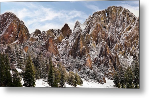 Cliff Texture Metal Print by Leland D Howard