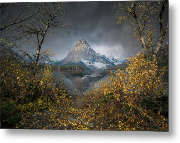 Clinging On / Late Fall / Two Medicine Lake, Glacier National Park  Metal Print