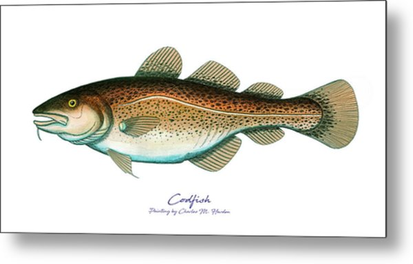 Codfish Metal Print