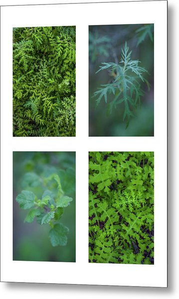 Collage - Sensitive To Green Metal Print by Alexander Kunz