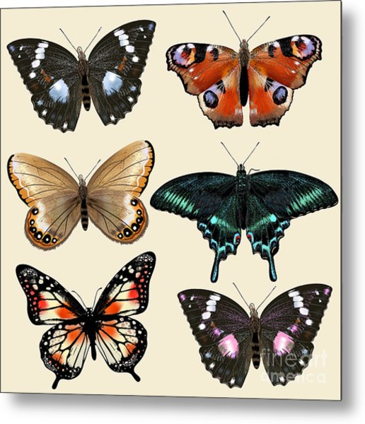 Collection Of Vector Colorful Realistic Metal Print