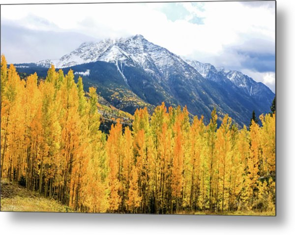 Colorado Aspens And Mountains 2 Metal Print