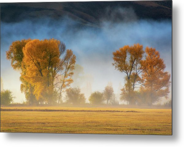 Colorado Autumn Fog Metal Print