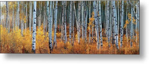 Colorado Autumn Wonder Panorama Metal Print