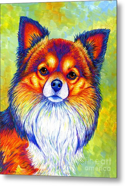 Colorful Long Haired Chihuahua Dog Metal Print