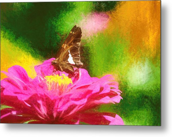Colorful Silver Spotted Skipper Butterfly Metal Print