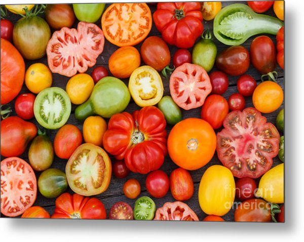 Colorful Tomatoes Metal Print