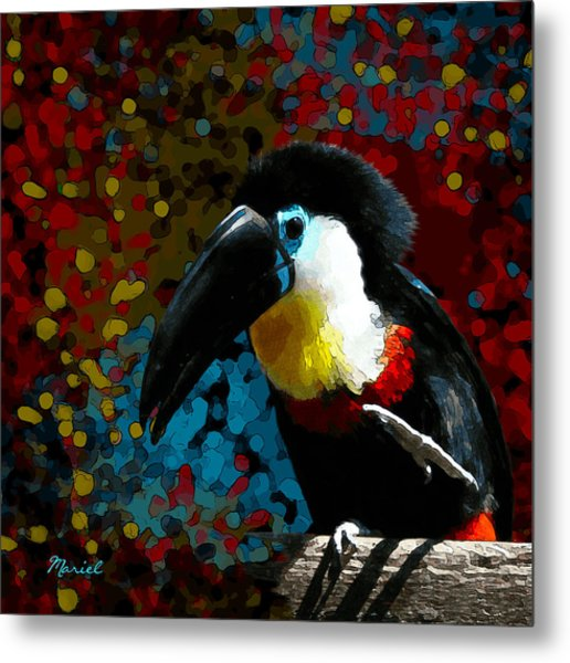 Colorful Toucan Metal Print