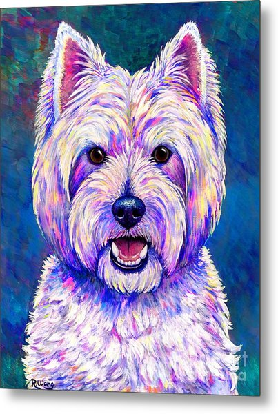 Colorful West Highland White Terrier Blue Background Metal Print