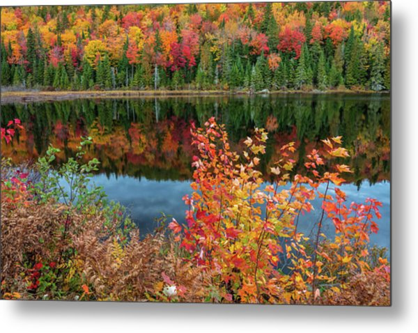 Metal Print featuring the photograph Colors Of Aurtumn by Pierre Leclerc Photography