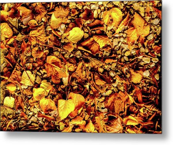 Colours. Autumn Gold Metal Print