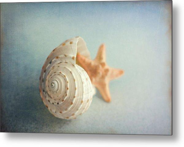 Conch Shell And Starfish Metal Print