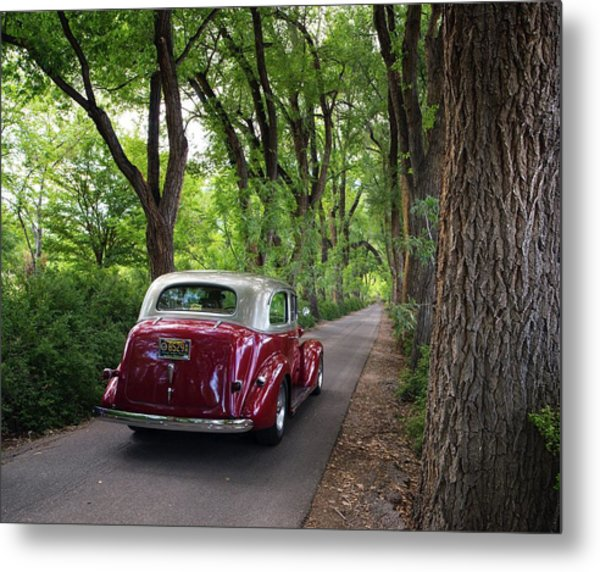 Cottonwood Classic Metal Print