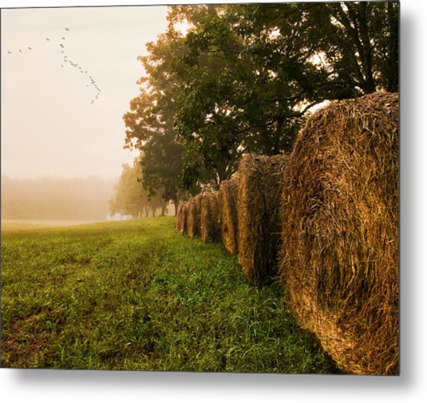 Country Morning Mist Metal Print