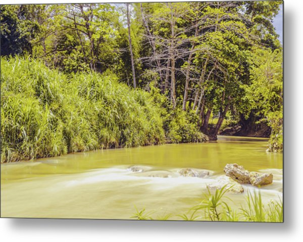 Country River In Trelawny Jamaica Metal Print