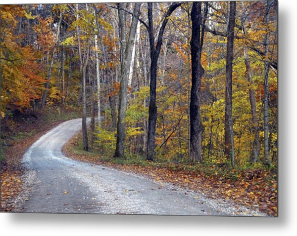 Metal Print featuring the photograph Country Road On Fall Day by Mike Murdock
