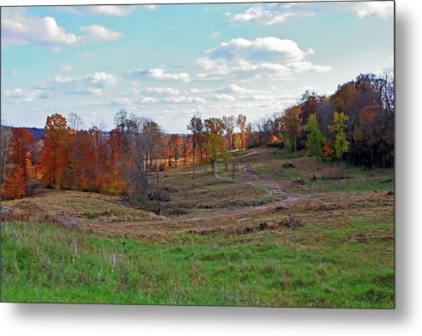 Metal Print featuring the photograph Countryside In The Fall by Angela Murdock