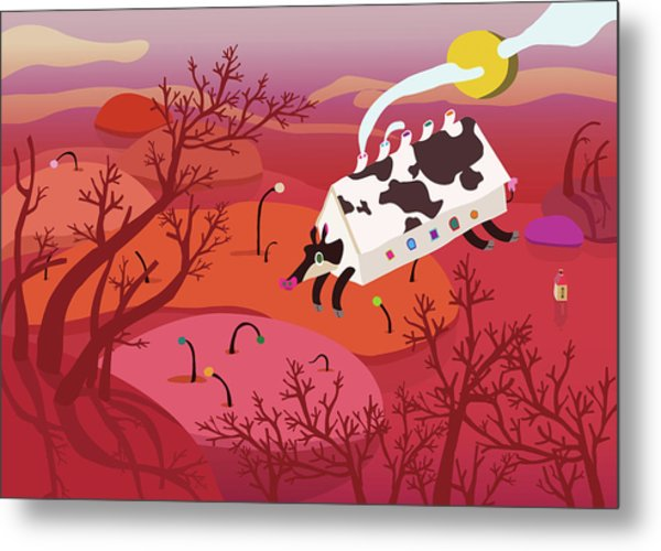 Cow Live In House Metal Print