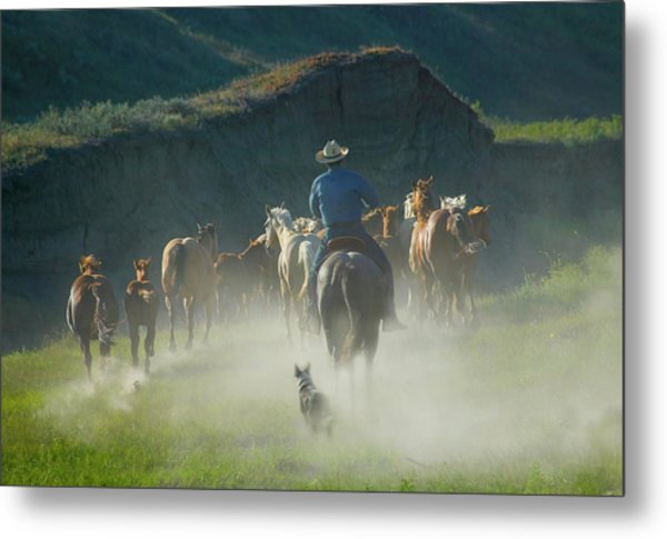 Cowboy With Horses And Dog On The Ranch Metal Print