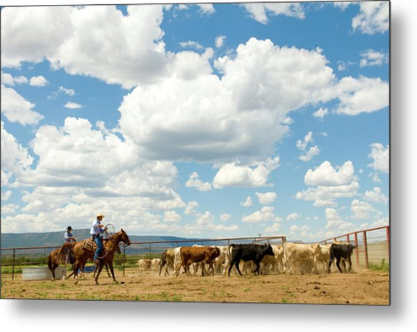 Cowboys And Cattle At Ranch Metal Print