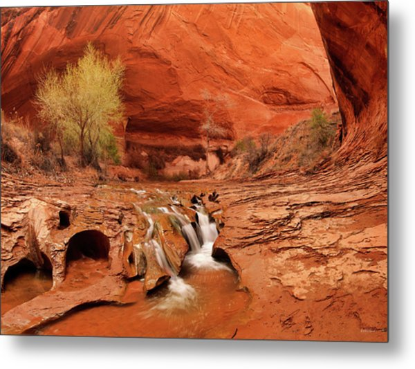Coyote Gulch Texture Metal Print by Leland D Howard