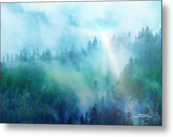 Crisp Morning Light Metal Print