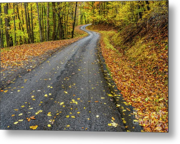 Curvy Country Road In Autumn Metal Print