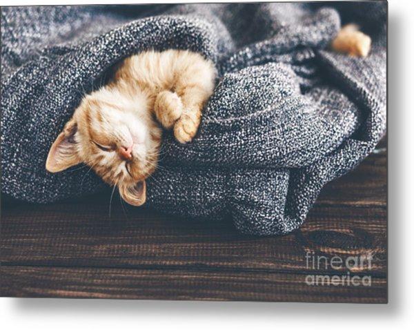 Cute Little Ginger Kitten Is Sleeping Metal Print