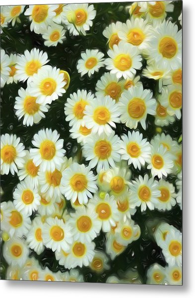 Daisy Crazy For You Metal Print