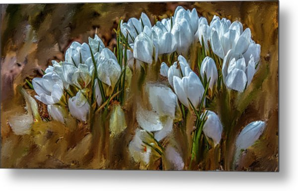 Dance In White #i6 Metal Print