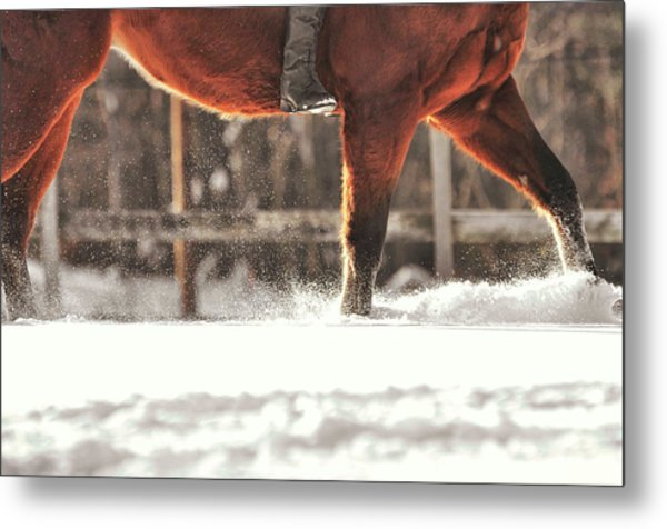 Dashing Through The Snow Metal Print by JAMART Photography