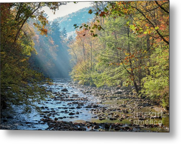 Dawn At Metcalf Bottoms Metal Print